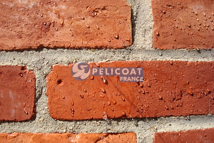 hydrofuge protect Pelicoat France cleaning products renovation protection heritage