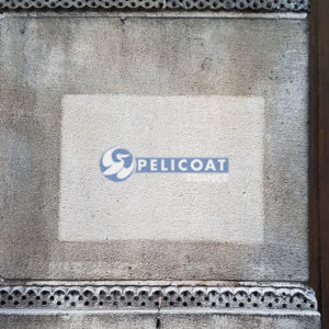 Test of professional cleaning product Pelicoat Pierre'Net